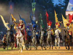 Beer Knights' Quest page reward knights tournament uai